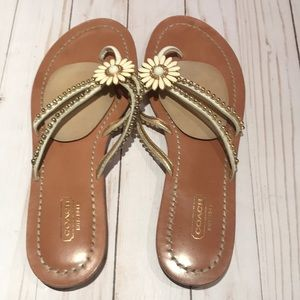 COACH | Sandals Flower Flats Leather